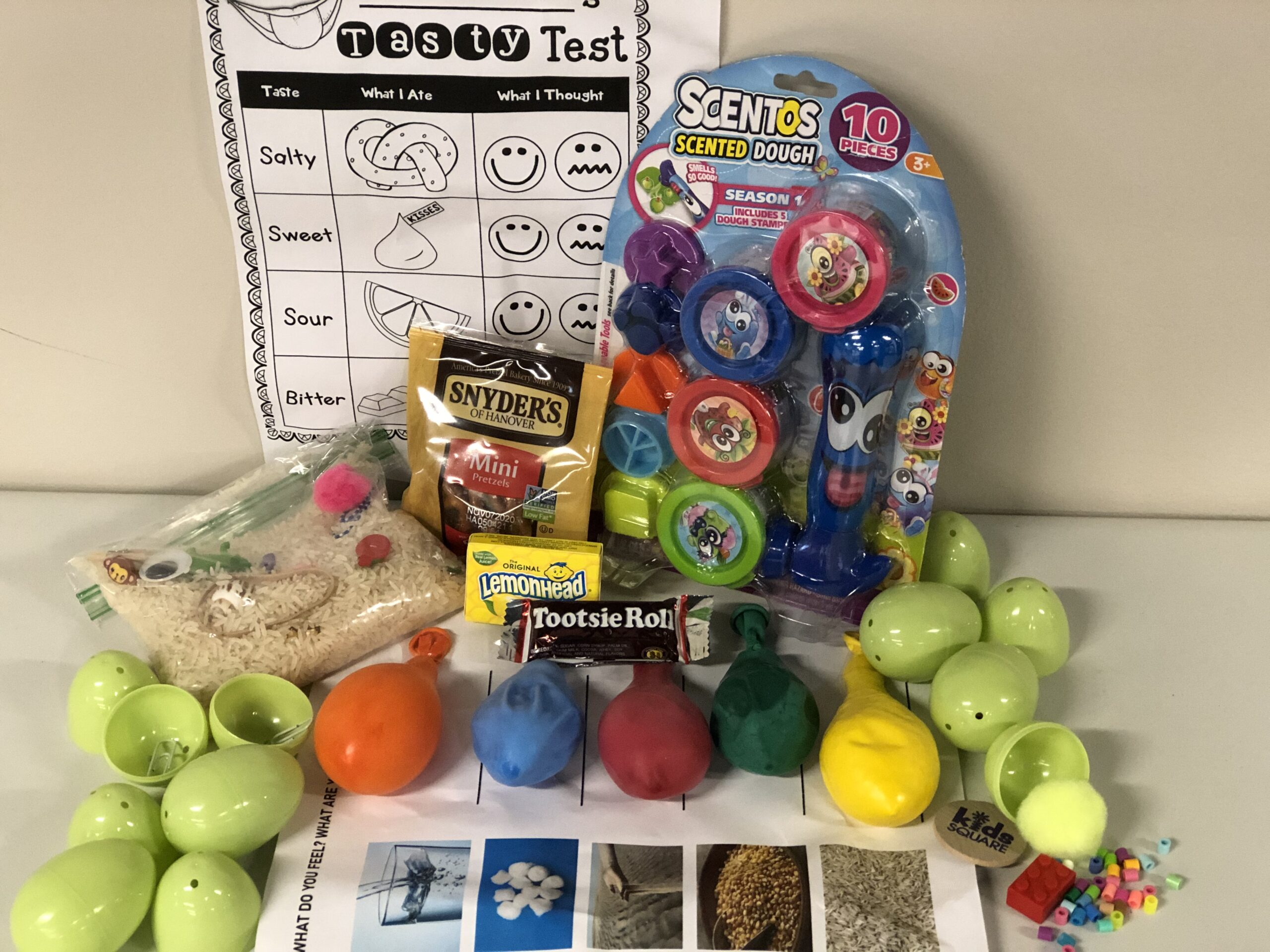 My 5 Senses STEM Kit
